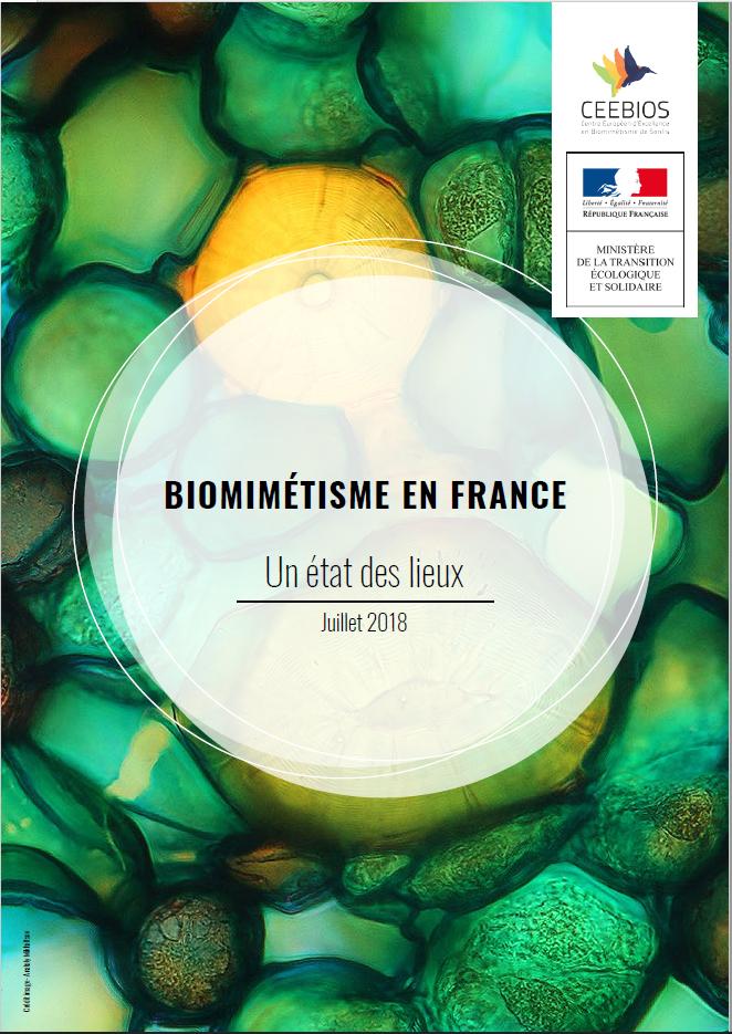 Biomimétisme en France - État des lieux