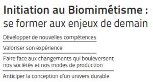 initiation au biomimetisme